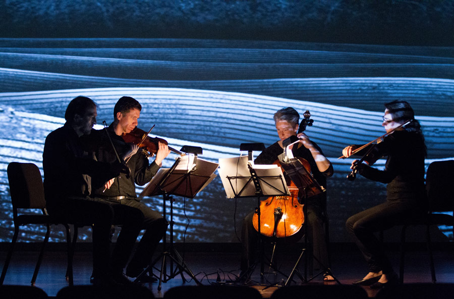 "The Penderecki String Quartet performs Thomas Adès' ""Arcadiana"" to an animation by Mike Patterson & Candace Reckinger (Photo/David Johnston)"