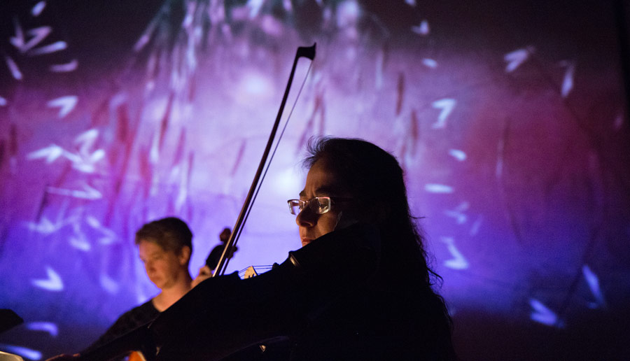 "Violist Christine Vlajk of the Penderecki String Quartet performs Thomas Adès' ""Arcadiana"" to an animation by Mike Patterson & Candace Reckinger (Photo/David Johntson)"