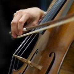 Strings_Cello_12_240