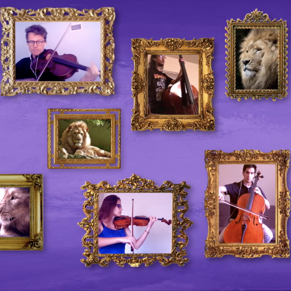 Screenshot from video showing musicians in gold picture frames surrounded by animals