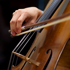 Picture of cellist's hand with bow
