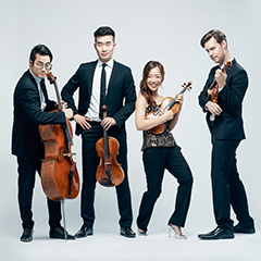 Four strings musicians on a white backdrop pose with their instruments