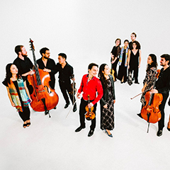 Many musicians with string insruments stand together in a white room